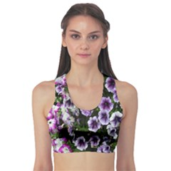 Flowers Blossom Bloom Plant Nature Sports Bra
