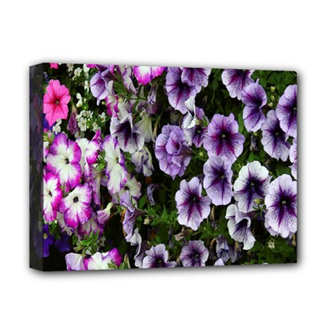 Flowers Blossom Bloom Plant Nature Deluxe Canvas 16  x 12