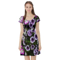 Flowers Blossom Bloom Plant Nature Short Sleeve Skater Dress