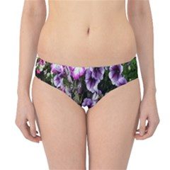 Flowers Blossom Bloom Plant Nature Hipster Bikini Bottoms