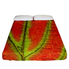 Unique Leaf Fitted Sheet (Queen Size)