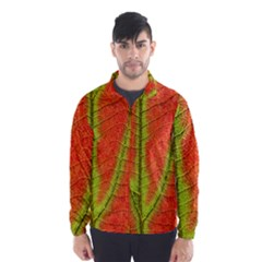 Unique Leaf Wind Breaker (Men)