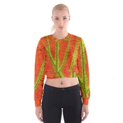 Unique Leaf Women s Cropped Sweatshirt