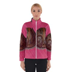 Snail Pink Background Winterwear