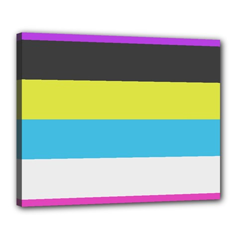 Bigender Flag Canvas 20  X 16