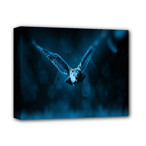 Night Owl Wide Deluxe Canvas 14  x 11