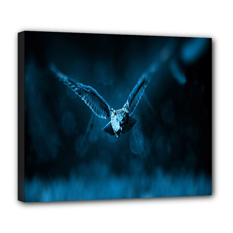 Night Owl Wide Deluxe Canvas 24  x 20