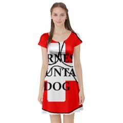 Ber Mt Dog Name Paw Switzerland Flag Short Sleeve Skater Dress