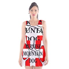 Ber Mt Dog Name Paw Switzerland Flag Scoop Neck Skater Dress