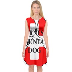 Ber Mt Dog Name Paw Switzerland Flag Capsleeve Midi Dress