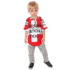 Ber Mt Dog Name Paw Switzerland Flag Kids  Raglan Tee