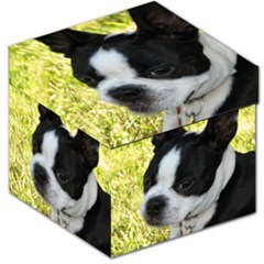 Boston Terrier Puppy Storage Stool 12