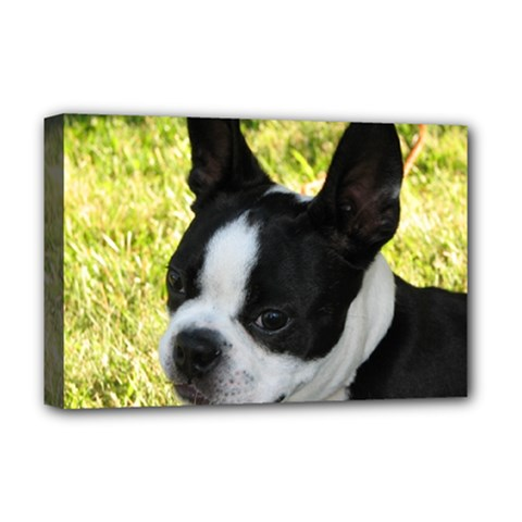 Boston Terrier Puppy Deluxe Canvas 18  x 12