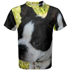 Boston Terrier Puppy Men s Cotton Tee