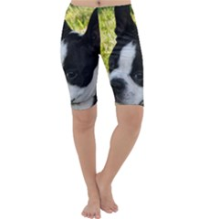 Boston Terrier Puppy Cropped Leggings