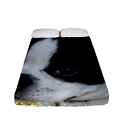 Boston Terrier Puppy Fitted Sheet (Full/ Double Size)