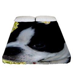 Boston Terrier Puppy Fitted Sheet (Queen Size)