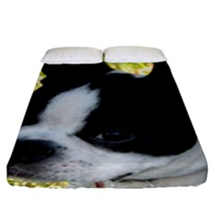 Boston Terrier Puppy Fitted Sheet (King Size)