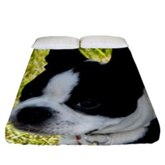 Boston Terrier Puppy Fitted Sheet (California King Size)