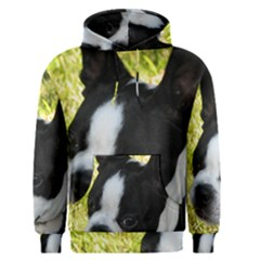 Boston Terrier Puppy Men s Pullover Hoodie