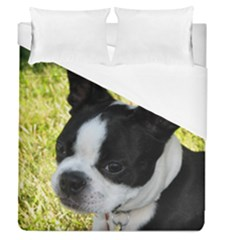Boston Terrier Puppy Duvet Cover (Queen Size)