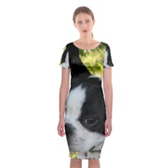 Boston Terrier Puppy Classic Short Sleeve Midi Dress
