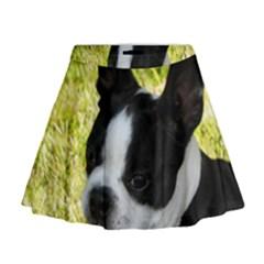 Boston Terrier Puppy Mini Flare Skirt