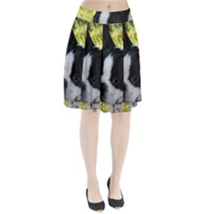 Boston Terrier Puppy Pleated Skirt