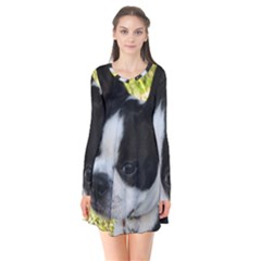Boston Terrier Puppy Flare Dress
