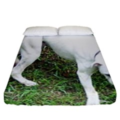 Boxer White Puppy Full Fitted Sheet (Queen Size)