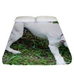 Boxer White Puppy Full Fitted Sheet (King Size)