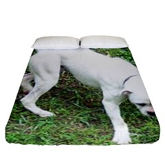 Boxer White Puppy Full Fitted Sheet (California King Size)