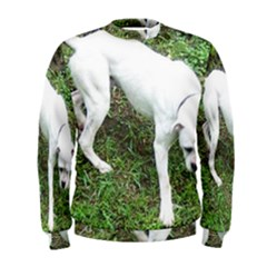 Boxer White Puppy Full Men s Sweatshirt