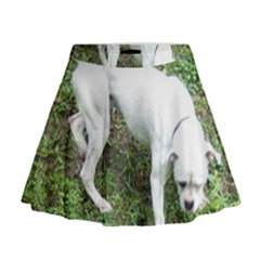 Boxer White Puppy Full Mini Flare Skirt