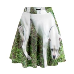 Boxer White Puppy Full High Waist Skirt