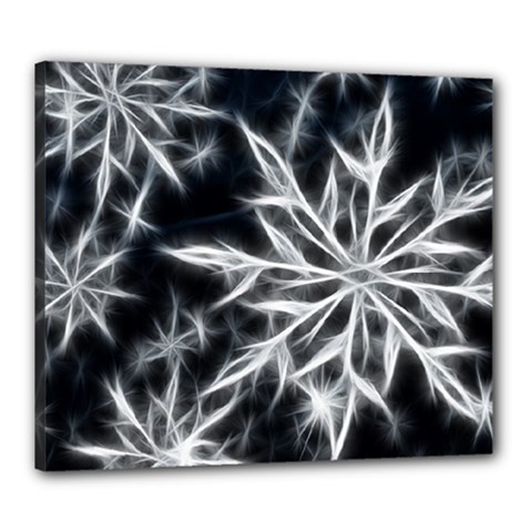 Snowflake in feather look, black and white Canvas 24  x 20