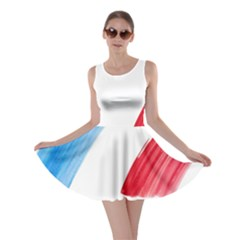 Tricolor banner france Skater Dress