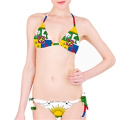 Coat of Arms of The Central African Republic Bikini Set
