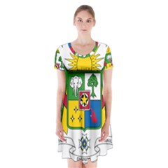 Coat of Arms of The Central African Republic Short Sleeve V-neck Flare Dress