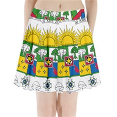 Coat of Arms of The Central African Republic Pleated Mini Skirt