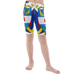 Coat of Arms of Colombia Kids  Mid Length Swim Shorts