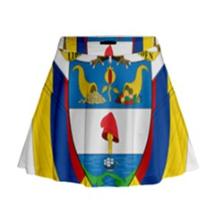 Coat of Arms of Colombia Mini Flare Skirt
