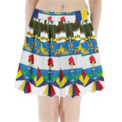 Coat of Arms of Colombia Pleated Mini Skirt
