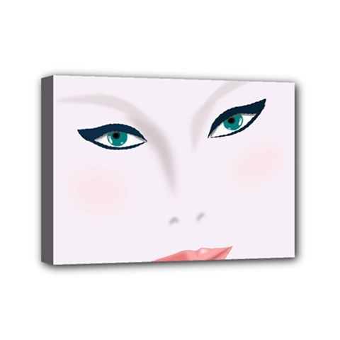 Face Beauty Woman Young Skin Mini Canvas 7  x 5