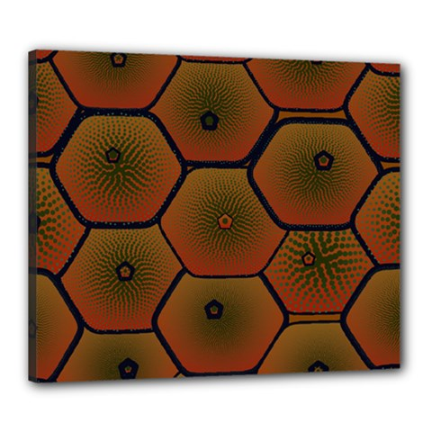 Psychedelic Pattern Canvas 24  x 20