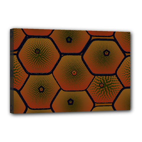 Psychedelic Pattern Canvas 18  x 12