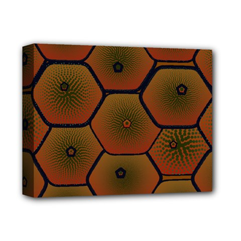 Psychedelic Pattern Deluxe Canvas 14  x 11