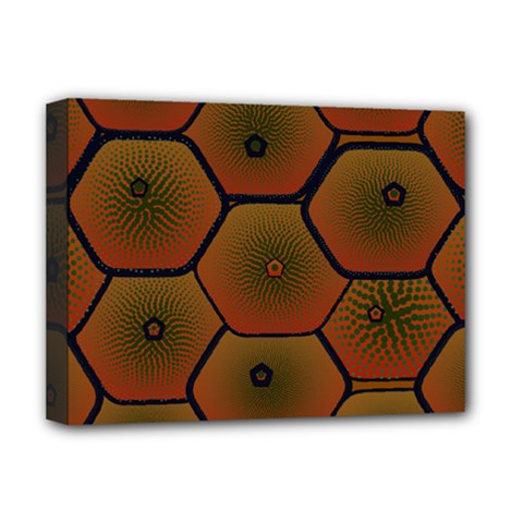Psychedelic Pattern Deluxe Canvas 16  x 12