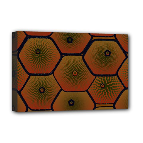 Psychedelic Pattern Deluxe Canvas 18  x 12