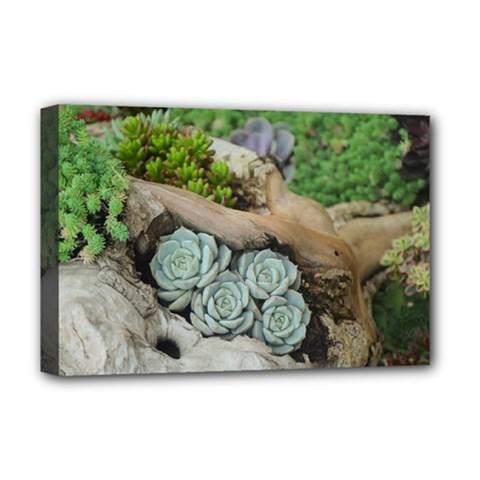 Plant Succulent Plants Flower Wood Deluxe Canvas 18  x 12